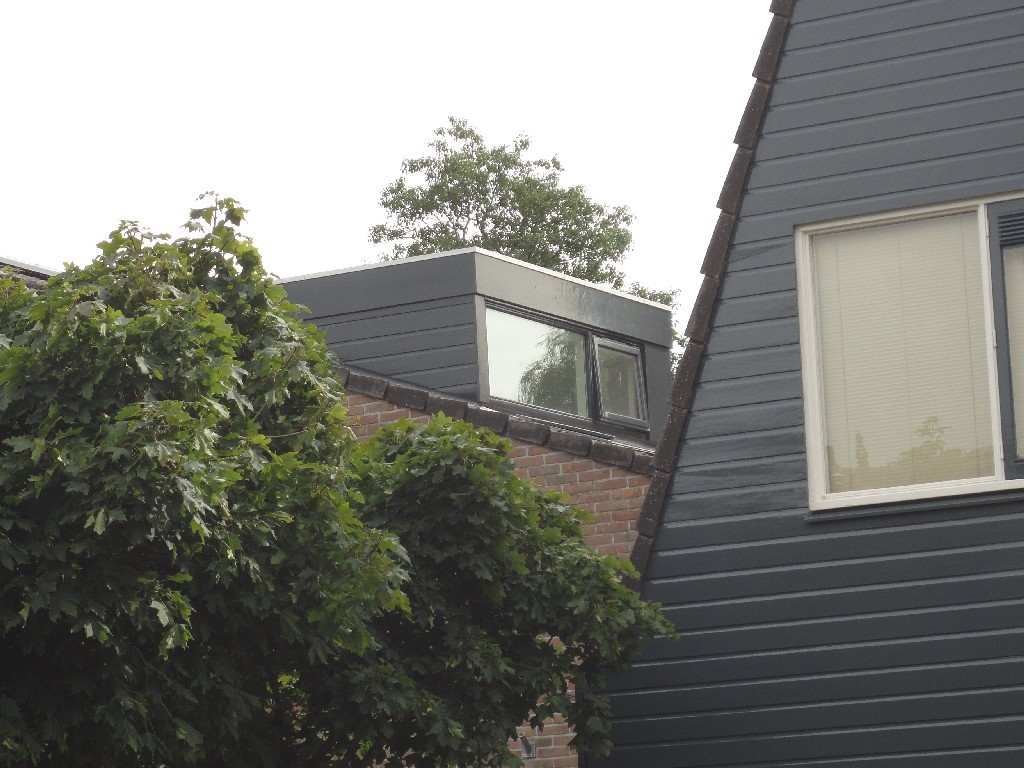 Louwenbouw dakkapel projecten 13