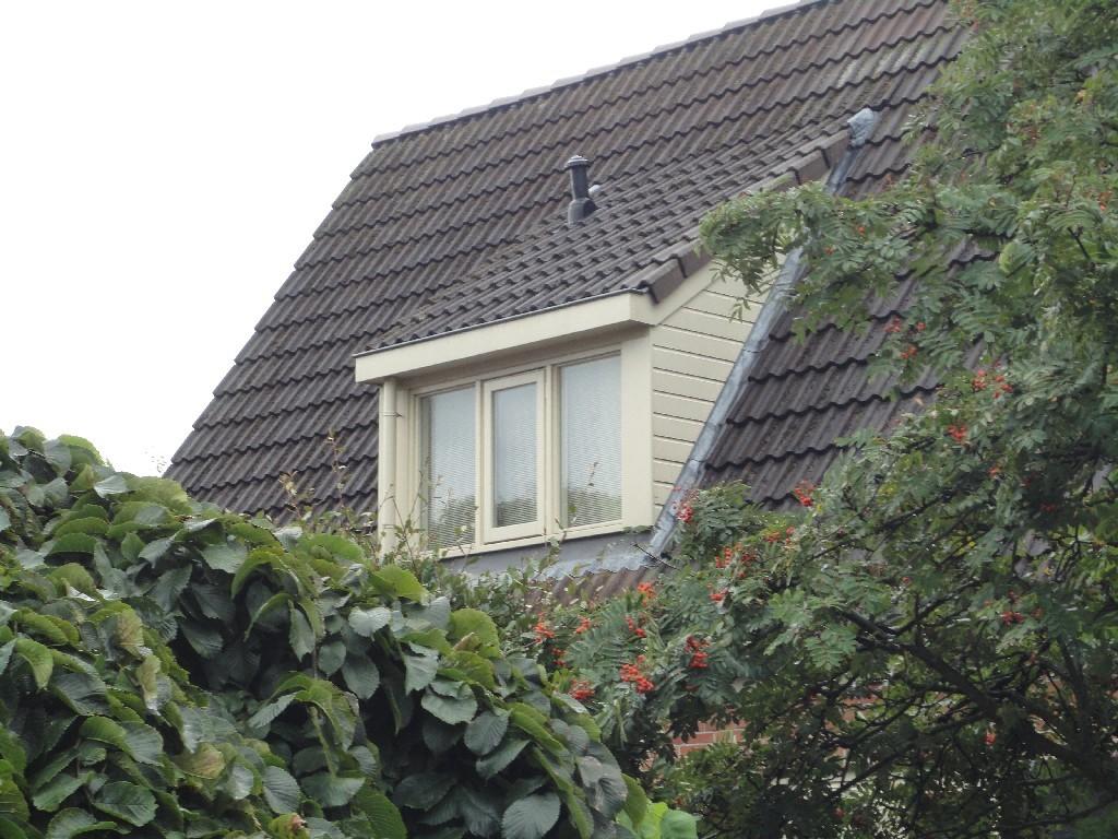 Louwenbouw dakkapel projecten 7